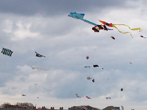 Loads of Kites