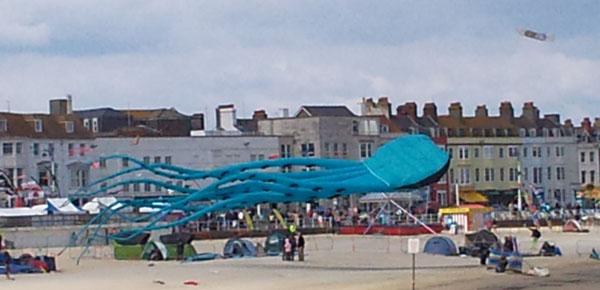 Octopus Kite 3